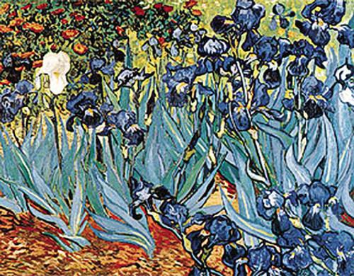Irises1