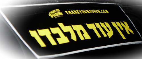 TYH Bumper Sticker