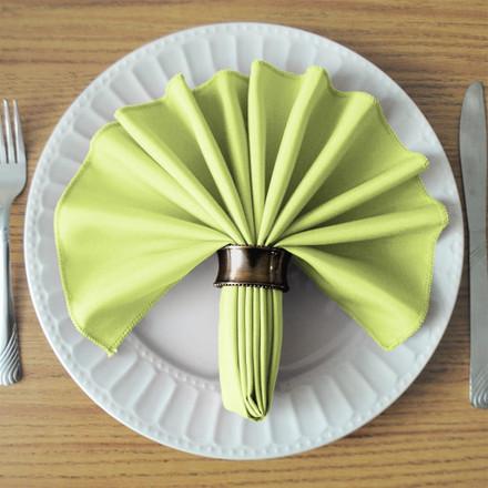 Tea Green SimplyPoly Cloth Napkins