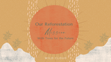Our reforestation mission with Trees for the Future