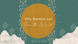 Why bamboo can save the planet?