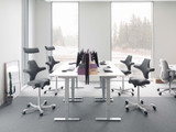 Office Ergonomics: What Is a Saddle Chair and Why Should You Use One?