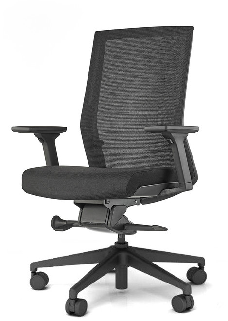Zilo Black frame with Black seat upholstery and standard black base and adjustable arms