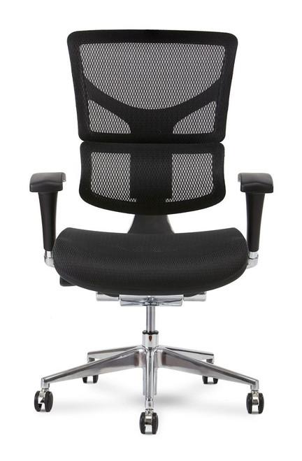 X2 Executive Plus Ergonomic Chair