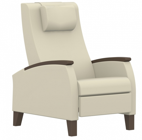 GlobalCare PrimaCare Motion Recliner with optional headrest