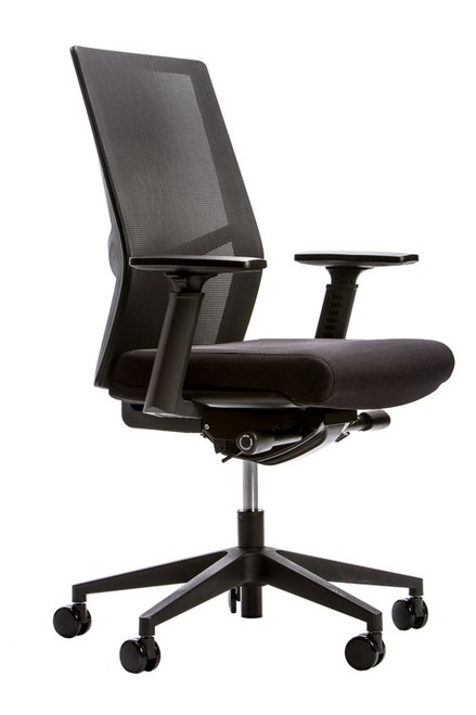 Element S6 Mesh Back Ergonomic Chair