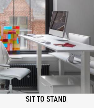 sitstandx.jpg