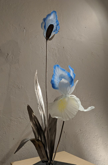4/9-11 The Textured Iris or Cattleya Orchid, with Craig Mitchell Smith
