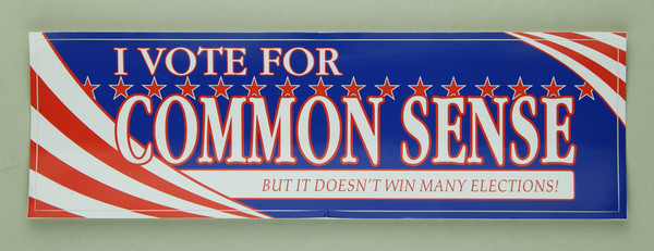 """I vote for common sense"" sticker"