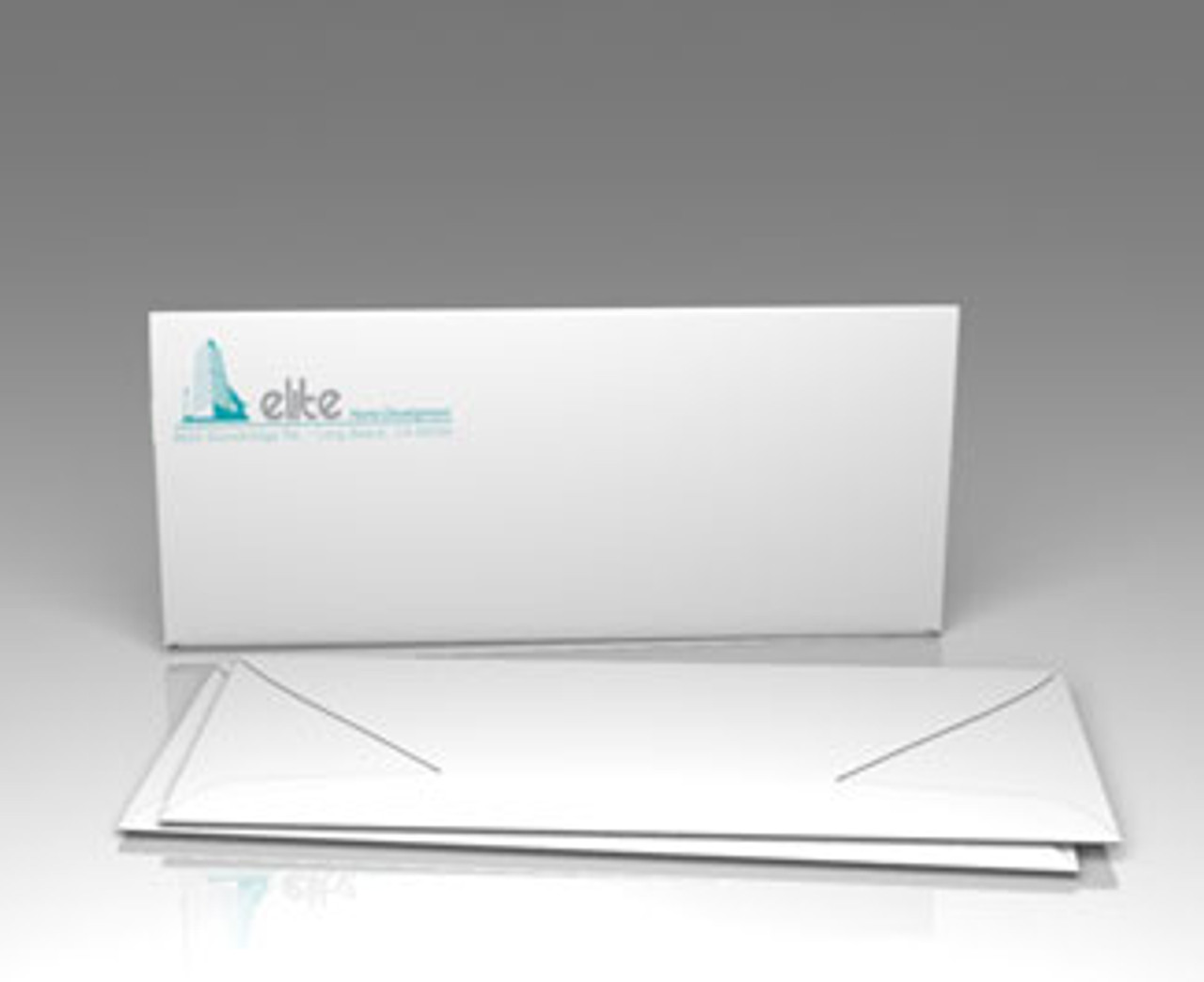 Custom #10 Size Envelopes