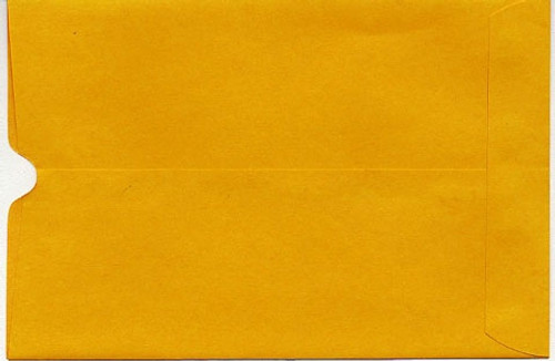 "6"" x 9"" Report Card Envelopes (ENV)"