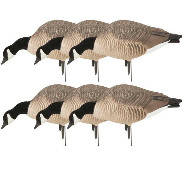 AVERY Pack of 6 Hunter Series Canadas Feeder Decoys (71596)