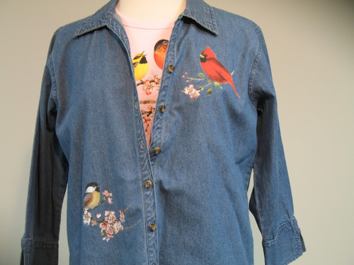 Songbirds of America 3/4 Sleeve Shirt