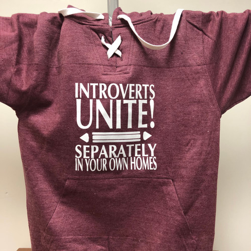 Introverts Unite Hockey Hoodie