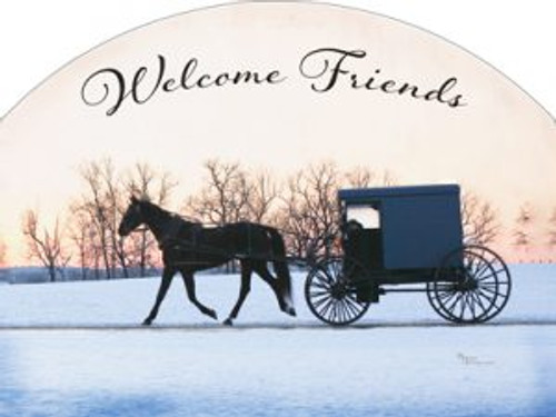 Amish Buggy Winter Slider