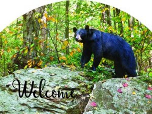 Bear Slider