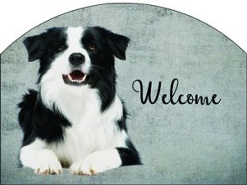 Border Collie Slider
