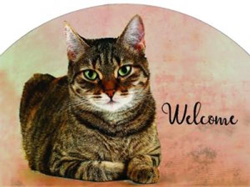Tabby Cat Slider