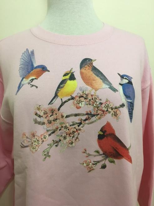 Songbirds of America Sweatshirt