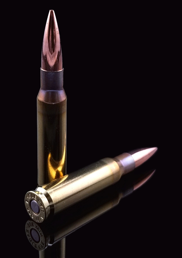 Eagle Eye 308 Win 175gr  OTM One Vertical One Horizontal