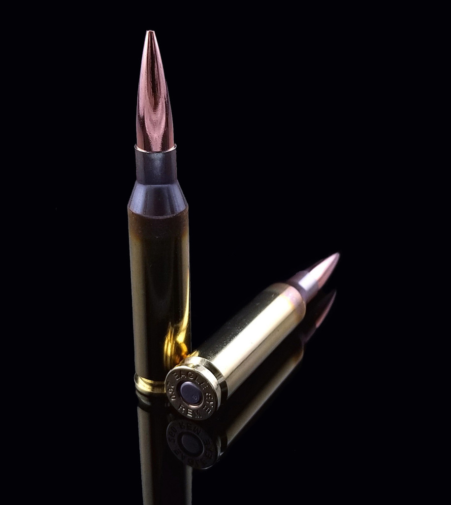 Eagle Eye Precision Match 260 Rem 130gr OTM One Vertical One Horizontal Cartridge