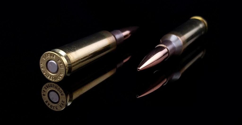 Eagle Eye Precision Match 6.5 Creedmoor 130gr Hybrid Two Horizontal