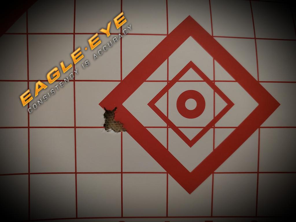 Eagle Eye Precision Match Hunting 6mm Creedmoor 95gr Classic Hunter