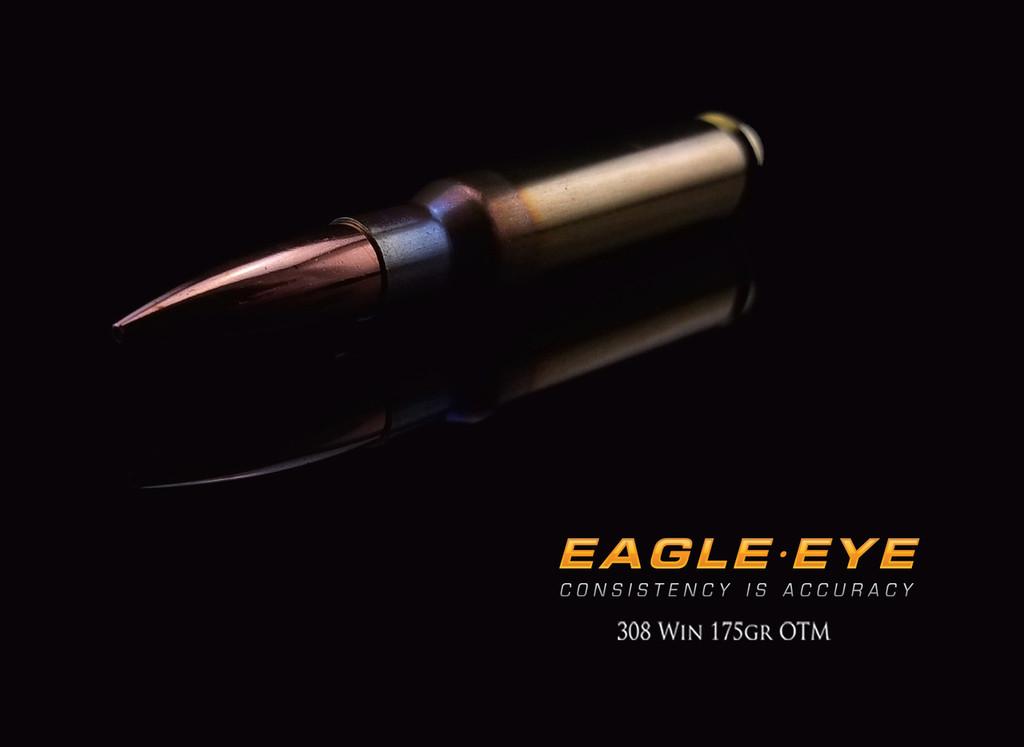Eagle Eye 308 Win 175gr Precision Match  Ammunition - 2