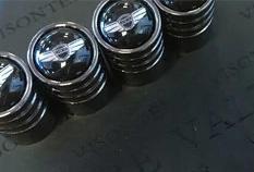Genesis Valve Stem Caps