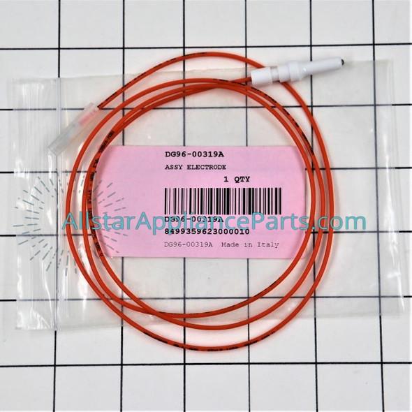 Spark Electrode DG96-00319A
