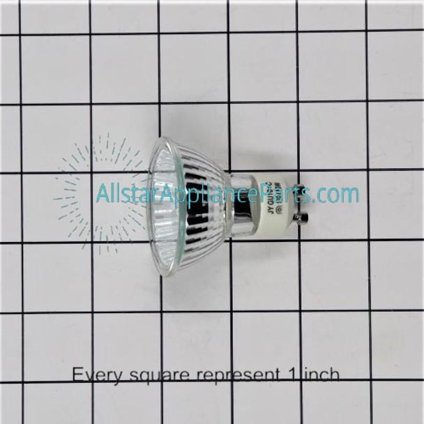Light Bulb 49001047