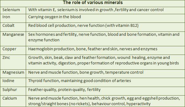 function-of-bird-minerals.jpg