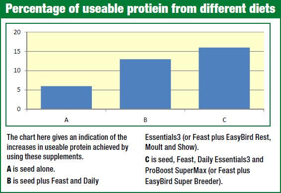 protein-in-birds-diet-chart.jpg