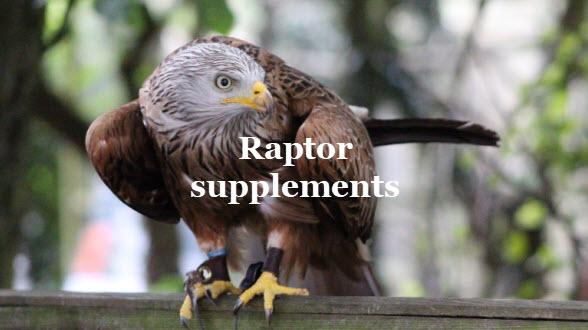 raptor-bird-supplements-2021.jpg