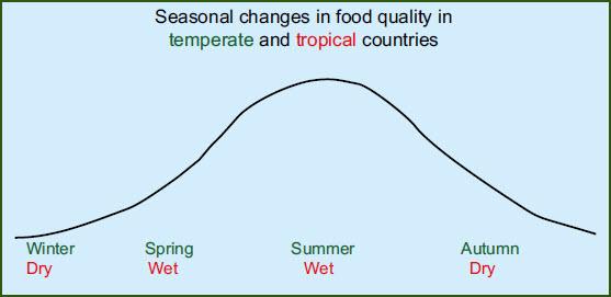 seasonal-changes-in-bird-diets-graph.jpg