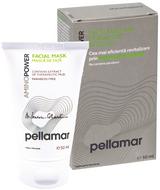 Pellamar Amino Power Intensive Care Face Mask -- 1.69 fl.oz.
