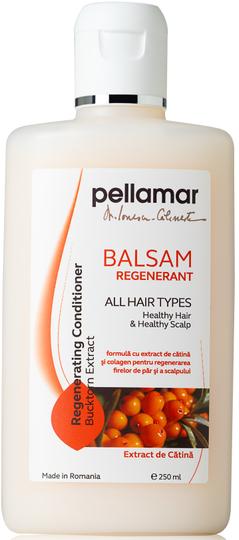 Pellamar Regenerating Conditioner with Buckthorn Oil