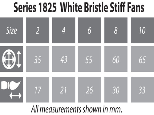 1825 White Hog Bristle Stiff Fan Brush Sizing Chart