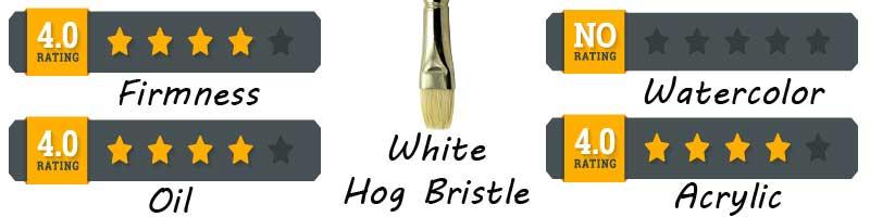 brush-header-infomation-white-bristle-200-x-800-.jpg