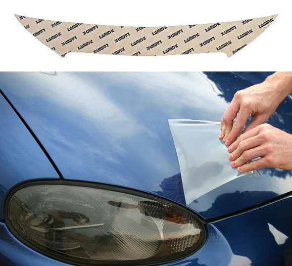 Buick LaCrosse (10-13) Invisible Bug Guard
