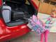 Chevy Volt (12-15) Rear Bumper Guard
