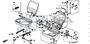 NUT, CAP 8MM - #31 - 94021 - Honda Acty HA4