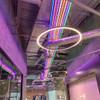 Top View Display LED Neon Flex, 15x26mm, Purple
