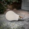Weatherproof Festoon Lamps   Classic GLS 1W In Warm White (B22/BC)