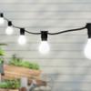 20 metre, 40 GLS Lamp Festoon String, 500mm Spacing with 40 bulbs, B22, Cool White2