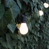 20 metre, 40 GLS Lamp Festoon String, 500mm Spacing with 40 bulbs, B22, Warm White1