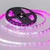 Syndeo by Tagra® 5w 12v 300 Lumen LED Tape Kit Pink 5 Metre
