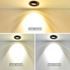 Integrated LED Tiltable Colour Changeable Fire Rated Downlight , IP65, White Finish