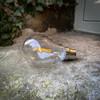 GLS Shape Filament Festoon Lamp, Warm White 3000K, 2w, B22