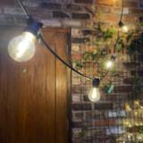 10 Metre, 20 Clear Filament GLS Lamp Festoon String, 500mm Spacing with 20 bulbs, Warm White 3000K, B224